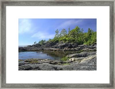 Bonita Botanical Beach Framed Print