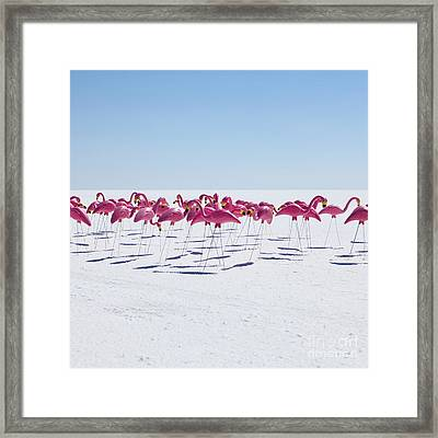 Bonneville Salt Flats Usa Framed Print
