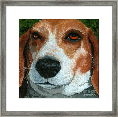 Bonnie - Beagle Painting Framed Print by Linda Apple