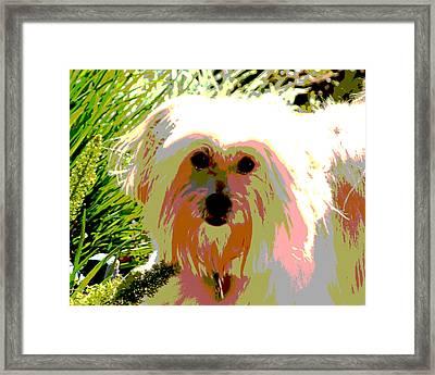 Bonnie In Color Framed Print by Ellen Lerner ODonnell