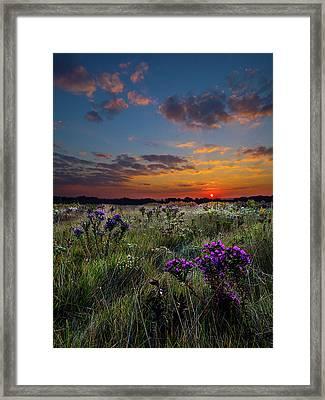 Bonnie's Meadow Framed Print by Phil Koch