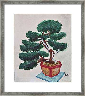 Bonsai #3 Framed Print