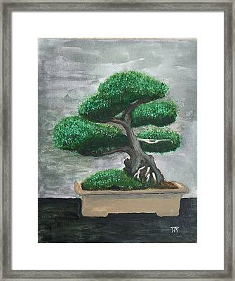 Bonsai #2 Framed Print