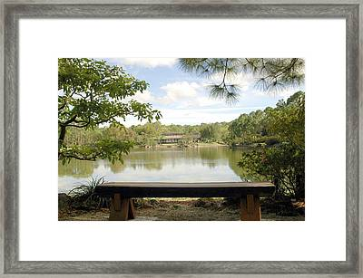 Bonsai Lake Framed Print