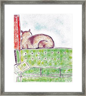 Boo Bear's Solitude Framed Print by Robyn Louisell