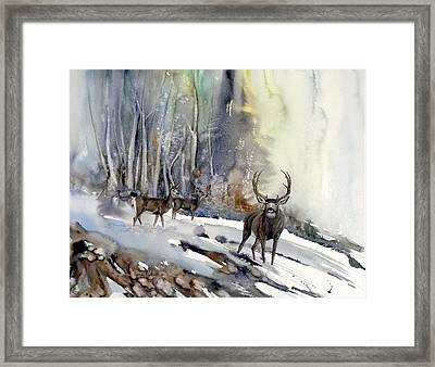 Boone And Crockett Framed Print by Lynne Parker
