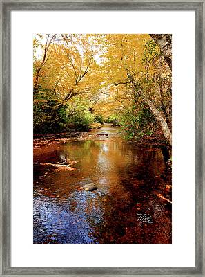 Framed Print featuring the photograph Boone Fork Stream by Meta Gatschenberger