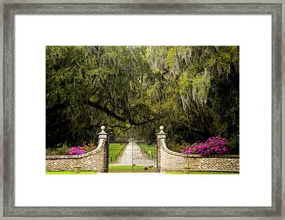 Boone Hall Plantation Framed Print by Eggers Photography