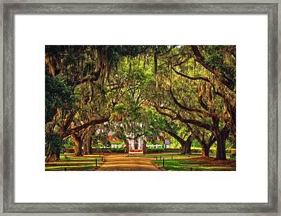 Boone Hall Plantation Framed Print by Joe Benton