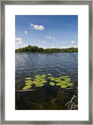 Borden Lake Scene Framed Print by Gary Eason