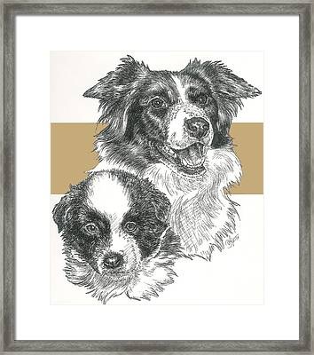 Border Collie And Pup Framed Print by Barbara Keith