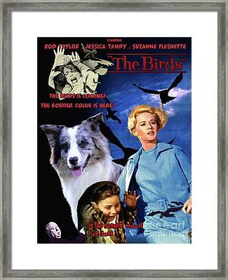 Border Collie Art Canvas Print - The Birds Movie Poster Framed Print