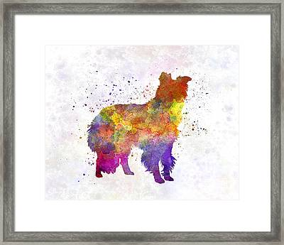 Border Collie In Watercolor Framed Print by Pablo Romero