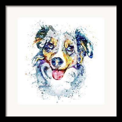 Collie Mixed Media Framed Prints