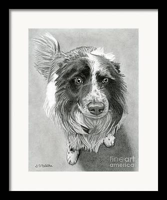Good Dog Framed Prints