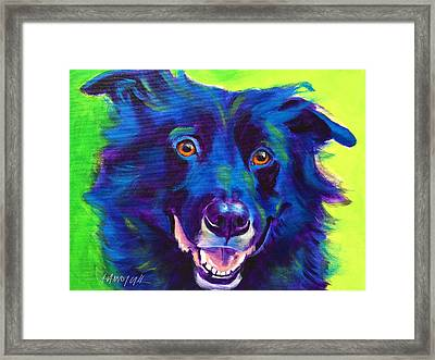 Border Collie - Viktor Framed Print by Alicia VanNoy Call