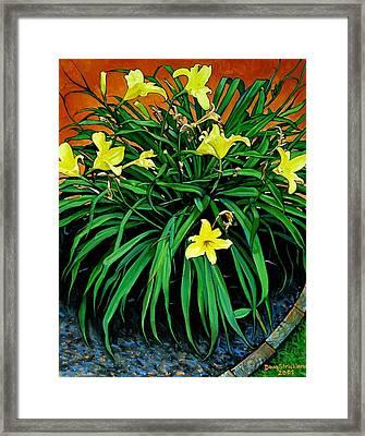 Border Daylilies Framed Print by Doug Strickland