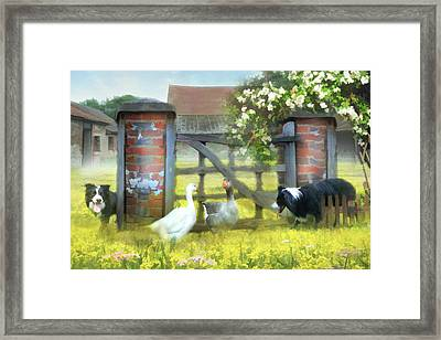 Border Patrol  Framed Print by Trudi Simmonds