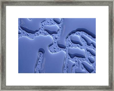 Boredom Framed Print by Kelly Jones