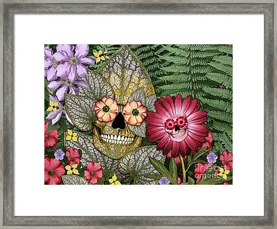 Born Again Framed Print by Christopher Beikmann