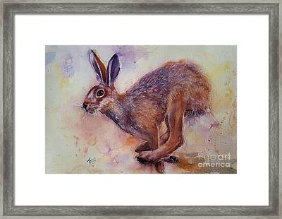 Born Free Framed Print by Patricia Pushaw