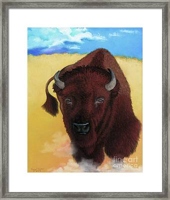 Born Of Thunder Framed Print by Tracy L Teeter