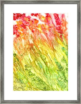 Born To Be Wild Framed Print by Rosie Brown