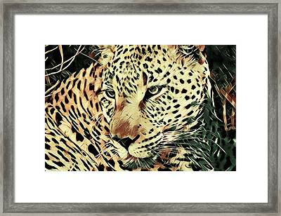 Born To Be Wild Framed Print by Susan Maxwell Schmidt