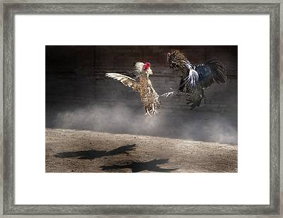 Born To Fight Framed Print by Richard Susanto