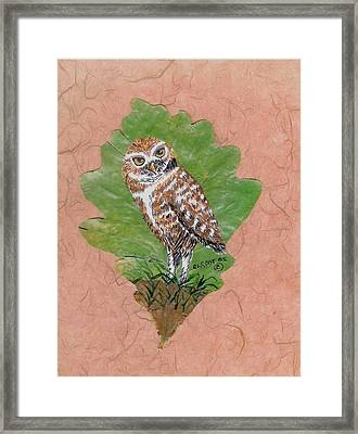 Borrowing Owl Framed Print