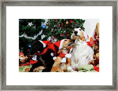 Borzoi Hounds Dressed As Father Christmas Framed Print by Christian Lagereek
