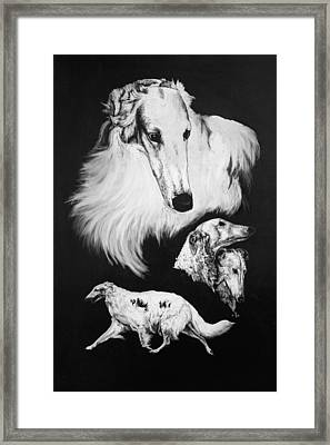 Framed Print featuring the drawing Borzoi by Rachel Hames