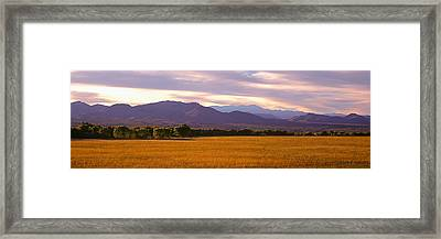 Bosque Del Apache National Wildlife Framed Print by Panoramic Images