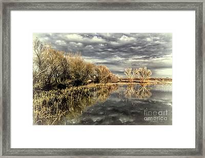 Bosque Dusk Framed Print