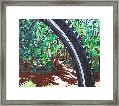 Bosque Singletrack Framed Print