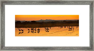 Bosque Sunrise Framed Print by Alan Vance Ley