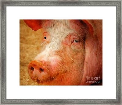 Boss Hog Painterly 20170922 V2 Framed Print
