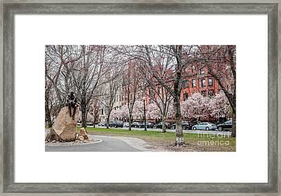 Boston Back Bay In Spring Framed Print by Edward Fielding