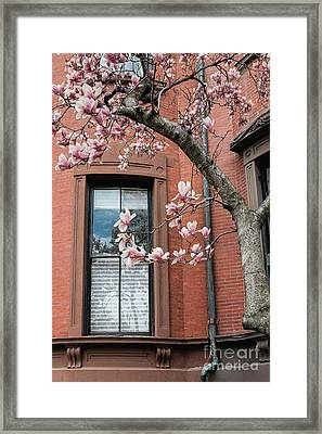Boston Back Bay Magnolias Framed Print by Edward Fielding