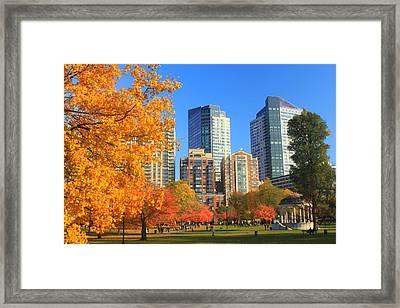 Boston Common In Autumn Framed Print by John Burk