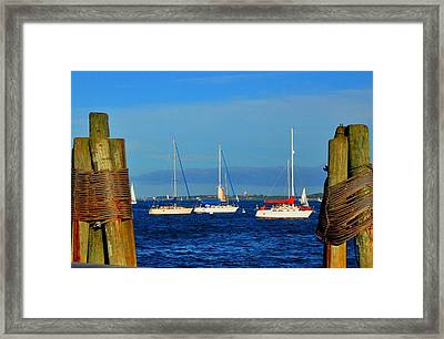 Boston Harbor Picture Perfect Framed Print by Andrew Dinh