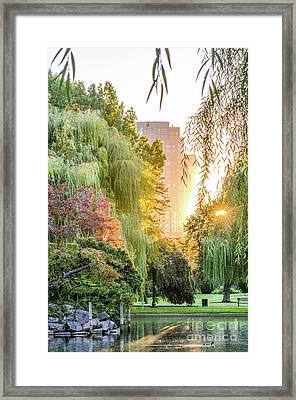 Boston Public Garden Sunrise Framed Print by Mike Ste Marie