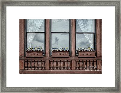 Boston Strong Window Boxes Framed Print by Edward Fielding