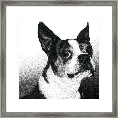 Boston Style Framed Print