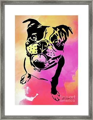 Boston Terrier Art By Nikki And Kaye Menner Framed Print