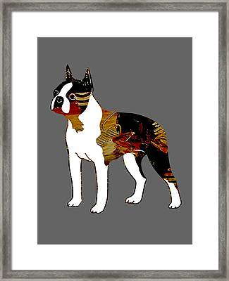 Boston Terrier Collection Framed Print by Marvin Blaine