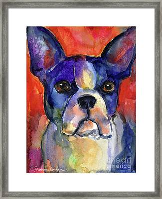 Boston Terrier Dog Painting  Framed Print