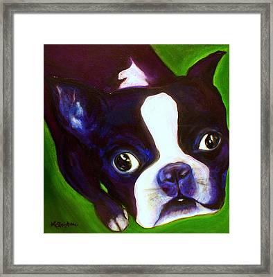 Boston Terrier - Elwood Framed Print