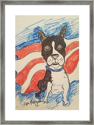 Boston Terrier Framed Print by Geraldine Myszenski