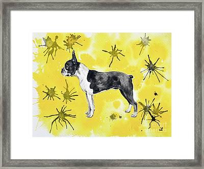 Framed Print featuring the painting Boston Terrier On Yellow by Zaira Dzhaubaeva